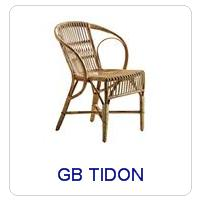 GB TIDON